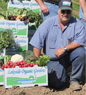 Dick Peixoto: Dick Peixoto, owner Lakeside Organic Gardens, produce, grown in Watsonville, Pajaro Valley, Santa Cruz County